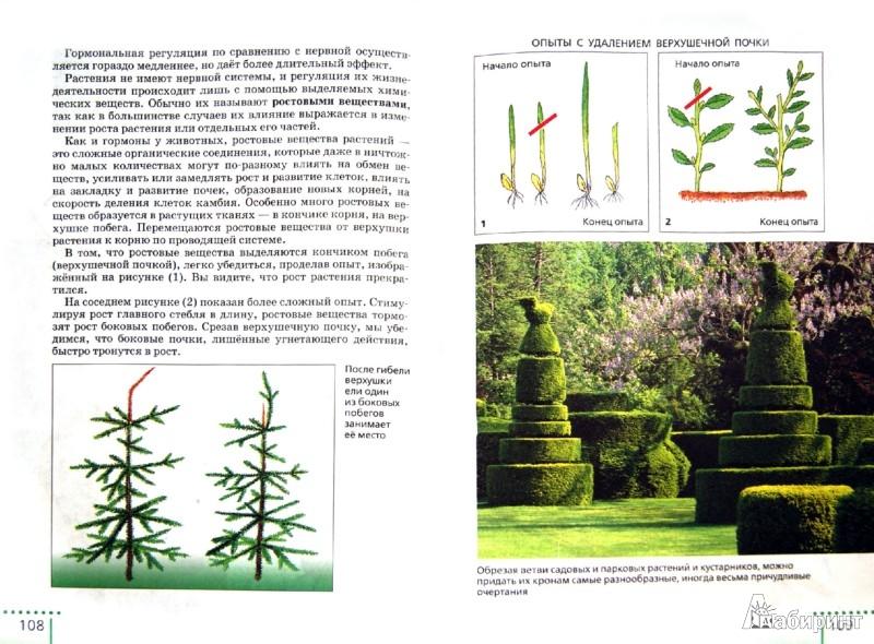 Иллюстрация 1 из 13 для Биология. Живой организм. 6 класс. Учебник. Вертикаль. ФГОС - Сонин, Сонина | Лабиринт - книги. Источник: Лабиринт