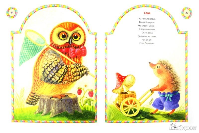 Иллюстрация 1 из 45 для Петя-петушок - Владимир Степанов | Лабиринт - книги. Источник: Лабиринт