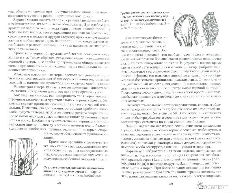 Иллюстрация 1 из 6 для Дождевые черви для повышения урожая - Виктор Горбунов | Лабиринт - книги. Источник: Лабиринт