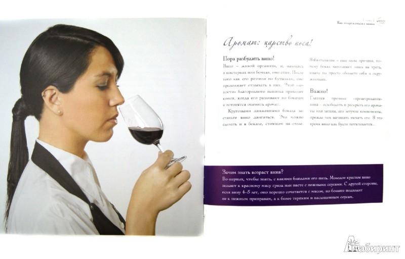 Иллюстрация 1 из 32 для Вино - это страсть - Терцано, Жинкаль   Лабиринт - книги. Источник: Лабиринт
