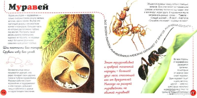 Иллюстрация 1 из 15 для Букашки - Ирина Травина   Лабиринт - книги. Источник: Лабиринт