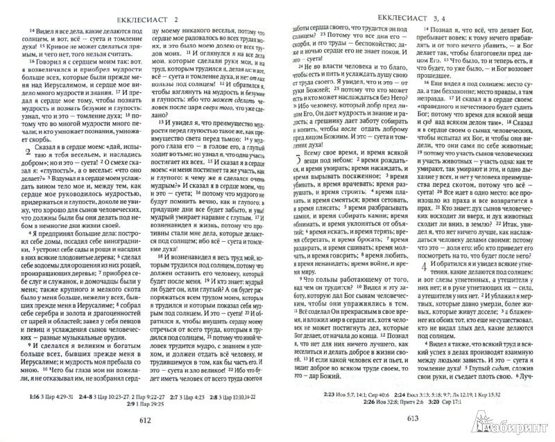 Иллюстрация 1 из 9 для Библия (каноническая). Книги Священного Писания Ветхого и Нового Завета (1135) | Лабиринт - книги. Источник: Лабиринт
