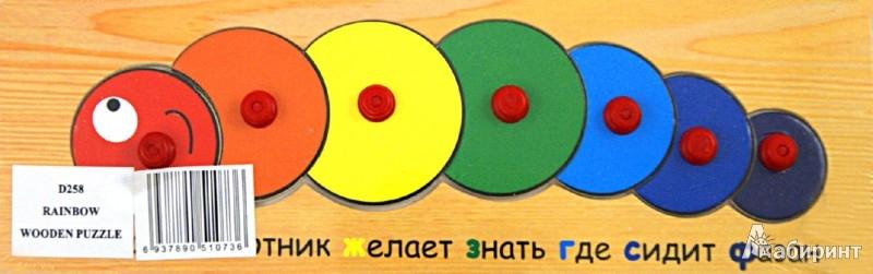 Иллюстрация 1 из 4 для Радужная гусеница (D258) | Лабиринт - игрушки. Источник: Лабиринт