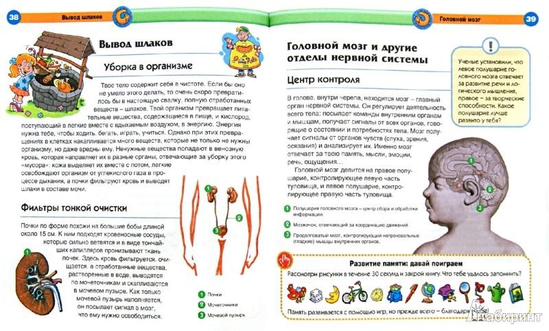 Иллюстрация 1 из 22 для Тело человека - Элиза Прати | Лабиринт - книги. Источник: Лабиринт