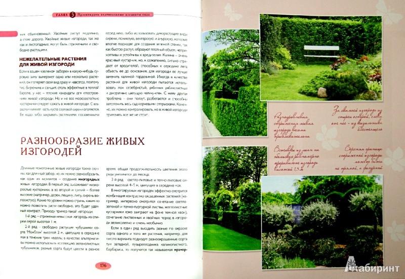 Иллюстрация 1 из 7 для Мой прекрасный сад - Татьяна Шиканян | Лабиринт - книги. Источник: Лабиринт