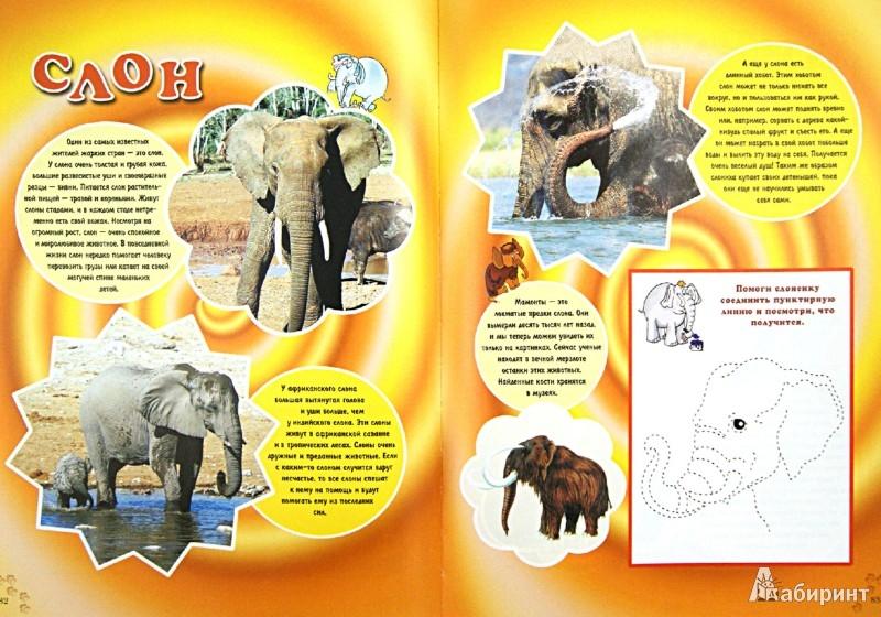 Иллюстрация 1 из 14 для Про зверят   Лабиринт - книги. Источник: Лабиринт