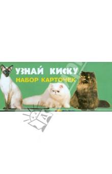 Набор карточек. Узнай кискуЖивотный и растительный мир<br>Набор картонных карточек с цветными фотографиями разных пород кошек и текстом о каждой из них.<br>