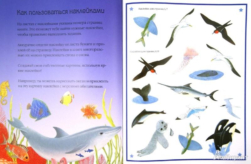 Иллюстрация 1 из 16 для Чудо-наклейки. Мир океана - Морис Пледжер | Лабиринт - книги. Источник: Лабиринт