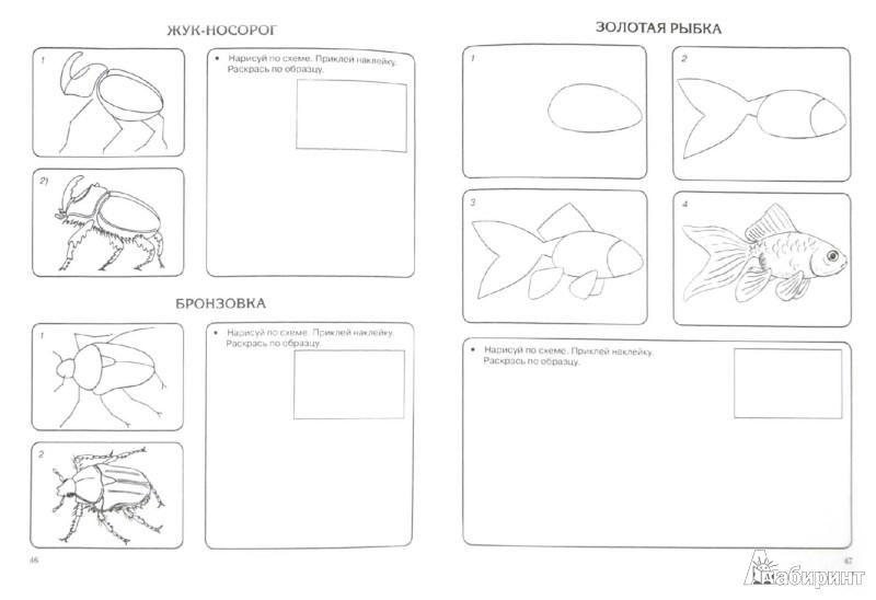 Иллюстрация 1 из 16 для Детский самоучитель рисования с наклейками - Вера Глотова | Лабиринт - книги. Источник: Лабиринт