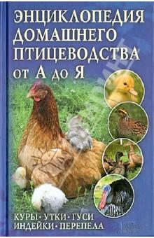 Энциклопедия домашнего птицеводства от А до Я. Куры, утки, гуси, индейки, перепела