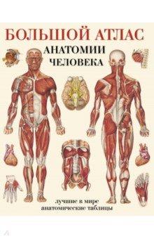 Большой атлас анатомии человекаАнатомия и физиология<br>В этих популярных таблицах сделан акцент на различных системах и органах тела. Мы внесли дополнения в наши компиляции всемирно известных таблиц и добавили к ним лучшие анатомические таблицы из нашей коллекции.<br>