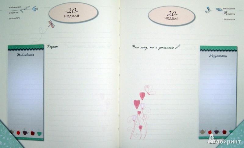 Иллюстрация 1 из 29 для Дневник моей стройности. Наблюдения. Рецепты. Результаты | Лабиринт - книги. Источник: Лабиринт
