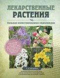 Татьяна Ильина: Лекарственные растения. Большая иллюстрированная энциклопедия