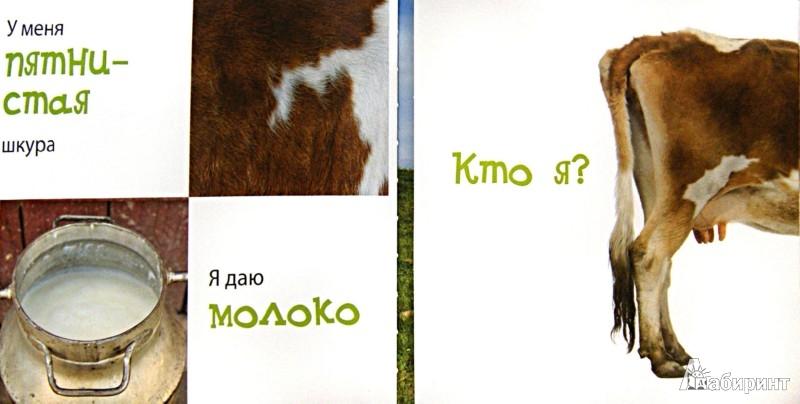 Иллюстрация 1 из 14 для В деревне (для детей от 4 лет) | Лабиринт - книги. Источник: Лабиринт