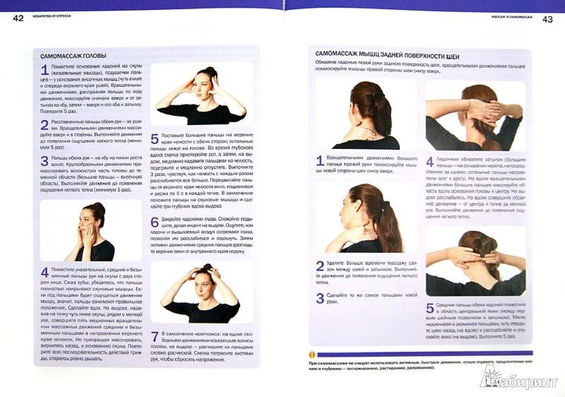 Иллюстрация 1 из 11 для Лекарство от стресса. Нервно-психическое здоровье - Владимир Саламатов | Лабиринт - книги. Источник: Лабиринт
