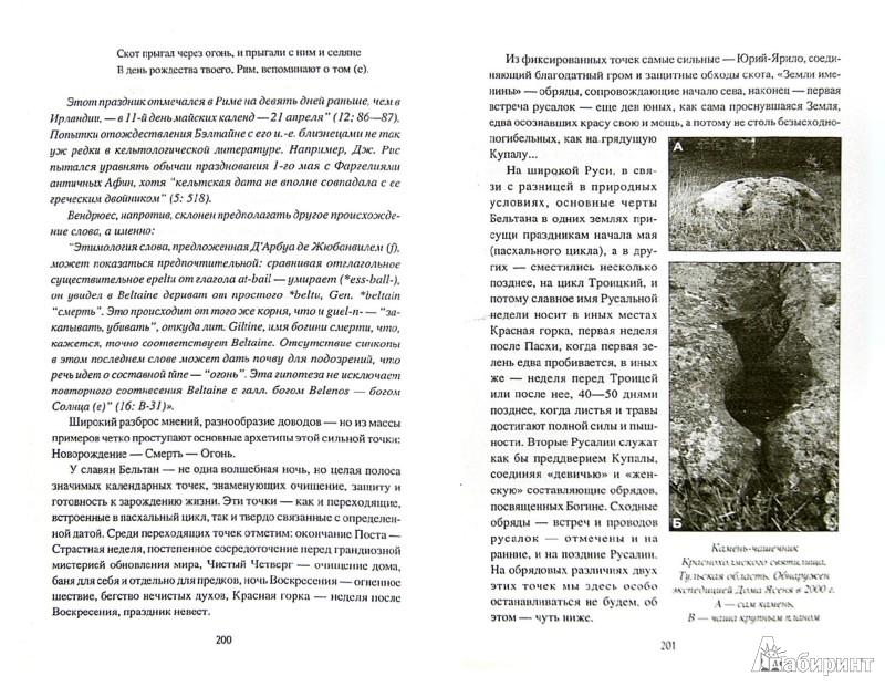 Иллюстрация 1 из 10 для Языческий календарь. Миф, обряд, образ - Грашина, Васильев   Лабиринт - книги. Источник: Лабиринт