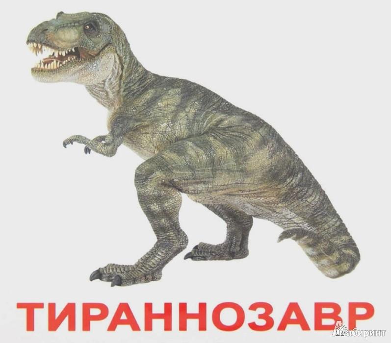 Иллюстрация 1 из 8 для Динозавры (с фактами и заданиями на обратной стороне карточек) | Лабиринт - книги. Источник: Лабиринт