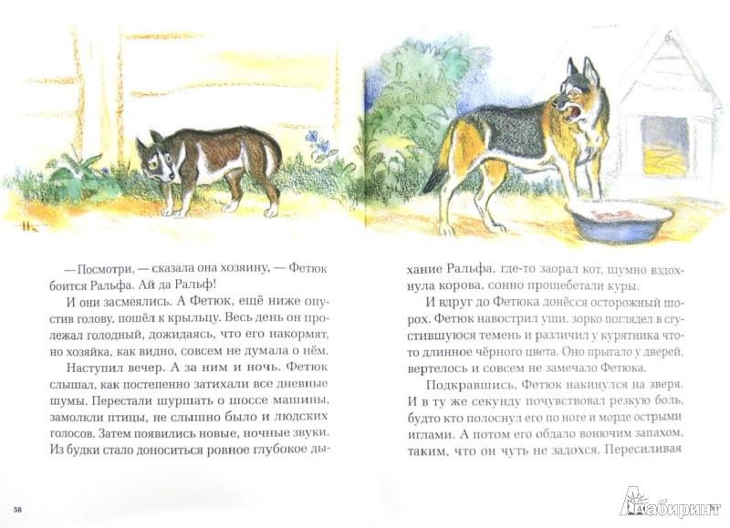Иллюстрация 1 из 68 для Рассказы и сказки - Сергей Воронин   Лабиринт - книги. Источник: Лабиринт