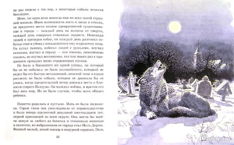 Иллюстрация 1 из 46 для Медвежонок Джонни - Эрнест Сетон-Томпсон   Лабиринт - книги. Источник: Лабиринт