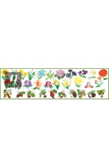 "Набор развивающих наклеек ""Моя корзинка. Цветы и орехи"" (Н-1410)"