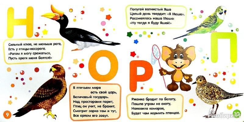 Иллюстрация 1 из 11 для Цедрик и азбука птиц - Наташа Гном | Лабиринт - книги. Источник: Лабиринт