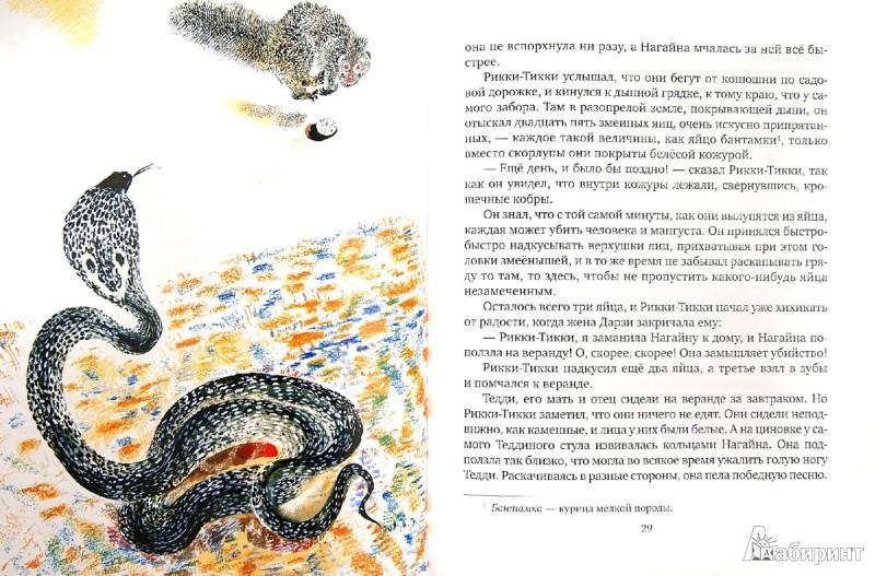 Иллюстрация 1 из 45 для Сказки с далеких берегов - Редьярд Киплинг | Лабиринт - книги. Источник: Лабиринт
