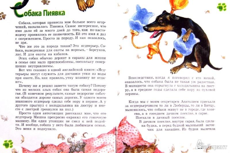 Иллюстрация 1 из 13 для Как любить собак - Эдуард Успенский   Лабиринт - книги. Источник: Лабиринт