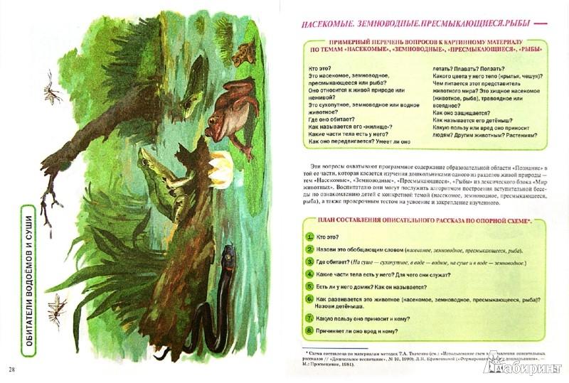 Иллюстрация 1 из 20 для Тематический словарь в картинках. Мир животных. Насекомые. Земноводные. Пресмыкающиеся. Рыбы   Лабиринт - книги. Источник: Лабиринт