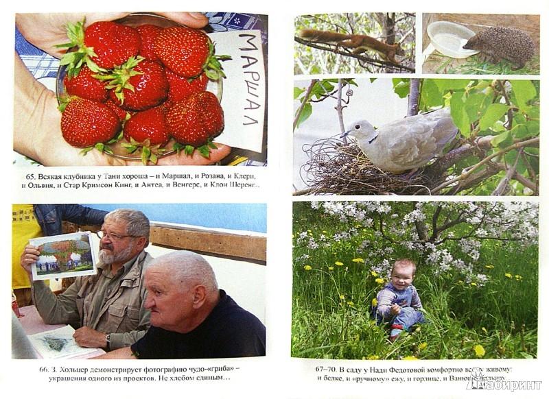 Иллюстрация 1 из 9 для Городим огород в ладу с природой - Борис Бублик   Лабиринт - книги. Источник: Лабиринт
