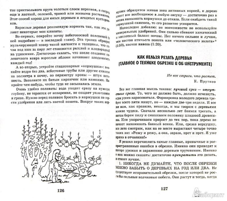 Иллюстрация 1 из 12 для Умный сад в подробностях - Николай Курдюмов | Лабиринт - книги. Источник: Лабиринт