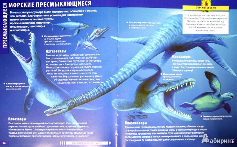 Иллюстрация 1 из 3 для Атлас динозавров - Барбара Маевская | Лабиринт - книги. Источник: Лабиринт