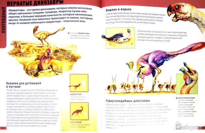 Иллюстрация 1 из 16 для Большой атлас для детей. 4 атласа в 1. Животные. Динозавры. Планета Земля. Тело человека - Леган, Любка, Маевская | Лабиринт - книги. Источник: Лабиринт