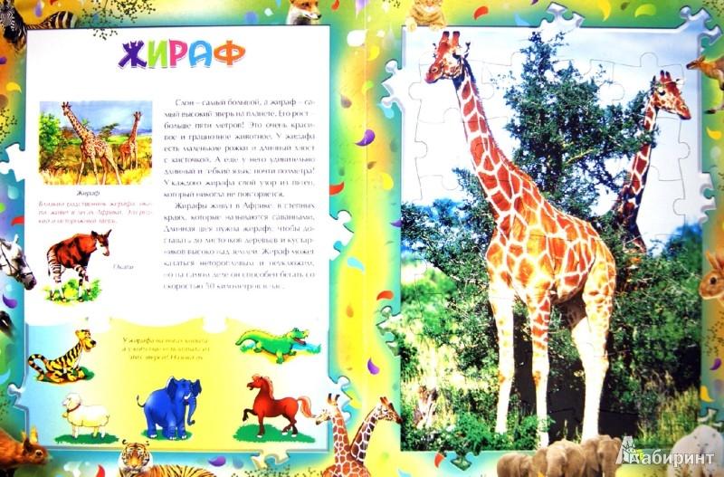 Иллюстрация 1 из 7 для Удивительные животные. Книга + 6 пазлов | Лабиринт - игрушки. Источник: Лабиринт