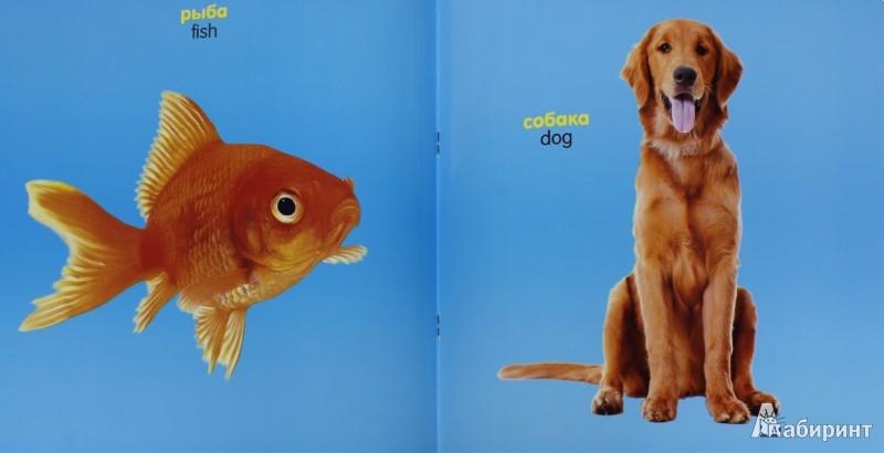 Иллюстрация 1 из 8 для Зверушки, рыбки и птички (для детей от 0 до 18 месяцев) | Лабиринт - книги. Источник: Лабиринт