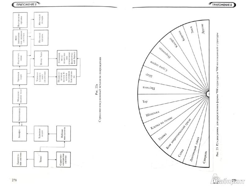 Иллюстрация 1 из 2 для Многомерная медицина. Система самодиагностики и самоисцеления человека - Людмила Пучко   Лабиринт - книги. Источник: Лабиринт