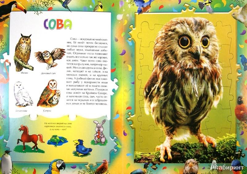 Иллюстрация 1 из 3 для Птицы. Книга с пазлами | Лабиринт - игрушки. Источник: Лабиринт