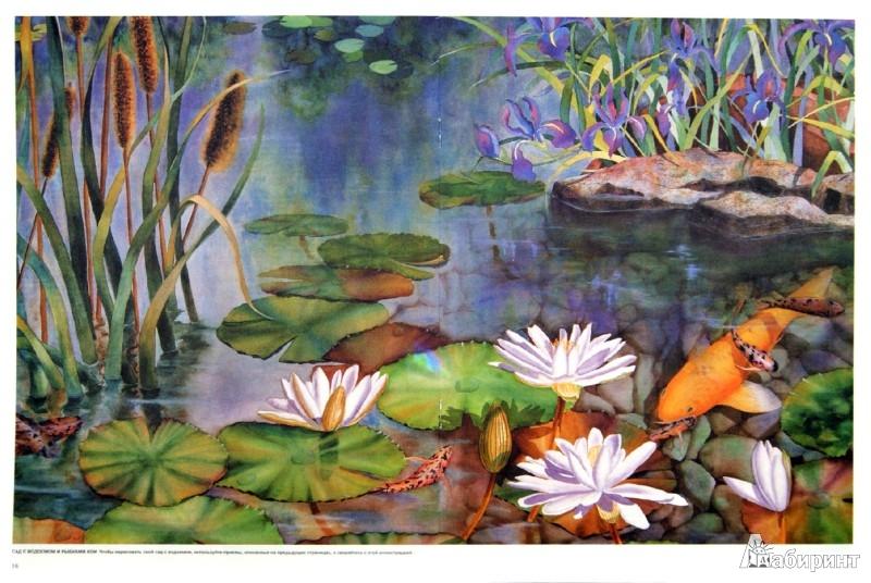Иллюстрация 1 из 14 для Цветы и растения - Лискотт, Мидвей, Фудерич | Лабиринт - книги. Источник: Лабиринт