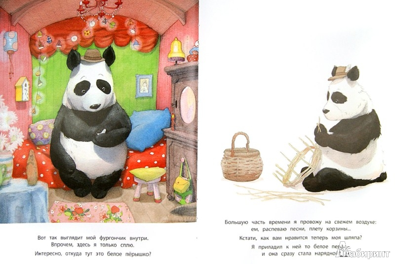 Иллюстрация 1 из 20 для Панда-бродяга - Квентин Гребан | Лабиринт - книги. Источник: Лабиринт