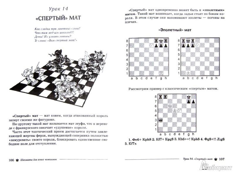 Иллюстрация 1 из 9 для Шахматы для юных чемпионов - Антонина Трофимова | Лабиринт - книги. Источник: Лабиринт