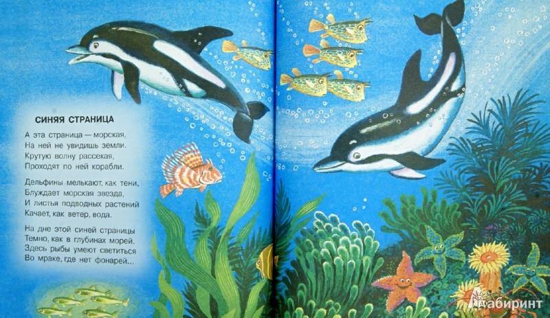 Иллюстрация 1 из 14 для Стихи и сказка - Самуил Маршак | Лабиринт - книги. Источник: Лабиринт