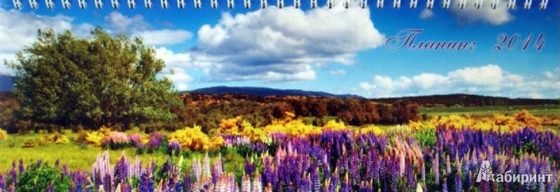 Иллюстрация 1 из 5 для Датированный планинг на 2014 год. Летний пейзаж (32004) | Лабиринт - канцтовы. Источник: Лабиринт