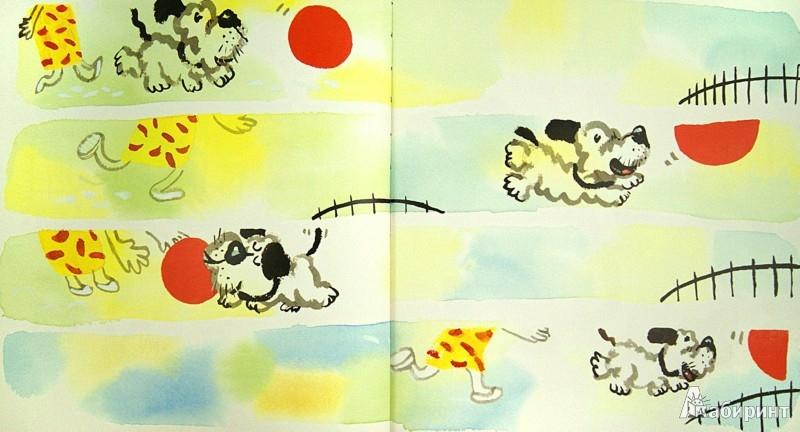 Иллюстрация 1 из 22 для Мяч для Дейзи - Крис Рашка   Лабиринт - книги. Источник: Лабиринт