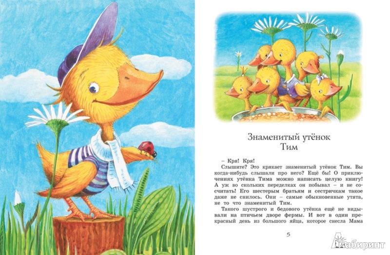 Иллюстрация 1 из 24 для Знаменитый утёнок Тим - Энид Блайтон | Лабиринт - книги. Источник: Лабиринт