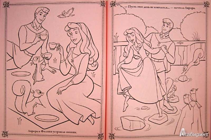 Иллюстрация 1 из 27 для Розовые мечты. Принцессы. Книжка-раскраска (с мелками)   Лабиринт - книги. Источник: Лабиринт
