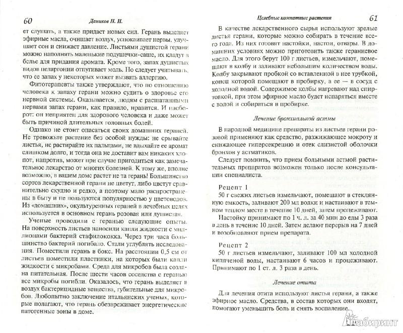 Иллюстрация 1 из 5 для Целебные комнатные растения - Николай Даников | Лабиринт - книги. Источник: Лабиринт
