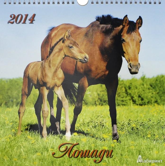 Иллюстрация 1 из 2 для Календарь на 2014 год