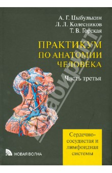 Практикум по анатомии человека. В 4-х частях. Часть 3. Сердечно-сосудистая и лимфоидная системыАнатомия и физиология<br>Часть третья включает задания, выполнение которых поможет усвоению разделов анатомии человека, посвященных сердечно-сосудистой и лимфоидной системам.<br>Предназначается для студентов лечебных факультетов медицинских вузов.<br>