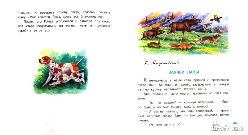 Рассказы о животных лабиринт книги