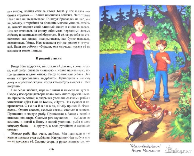 Иллюстрация 1 из 20 для Хрестоматия для домашнего чтения. 1-4 классы | Лабиринт - книги. Источник: Лабиринт