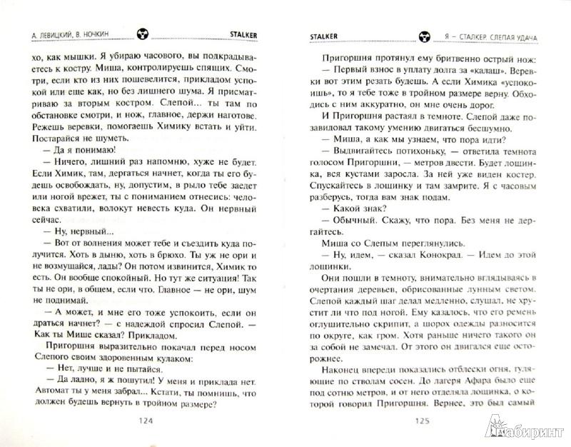 Иллюстрация 1 из 16 для Я - сталкер. Слепая удача - Левицкий, Ночкин | Лабиринт - книги. Источник: Лабиринт